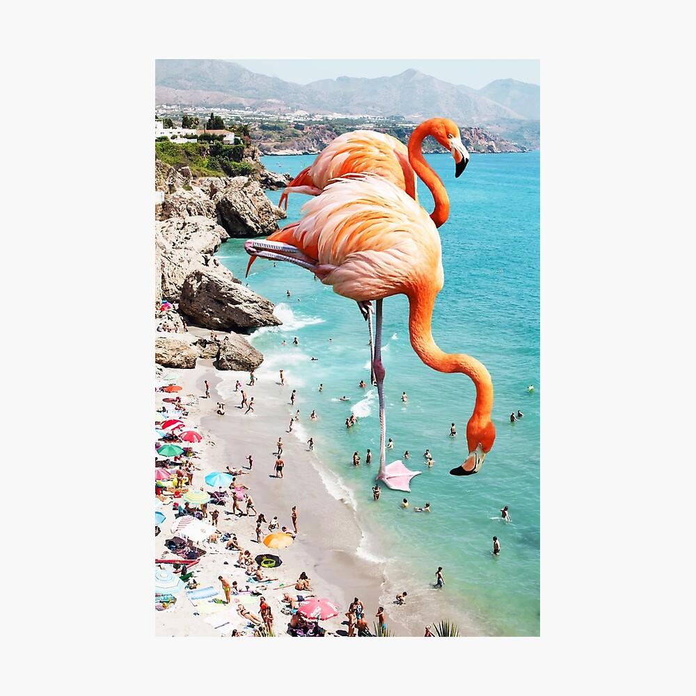 Flamingos am Strand #redbubble #decor Fotodruck