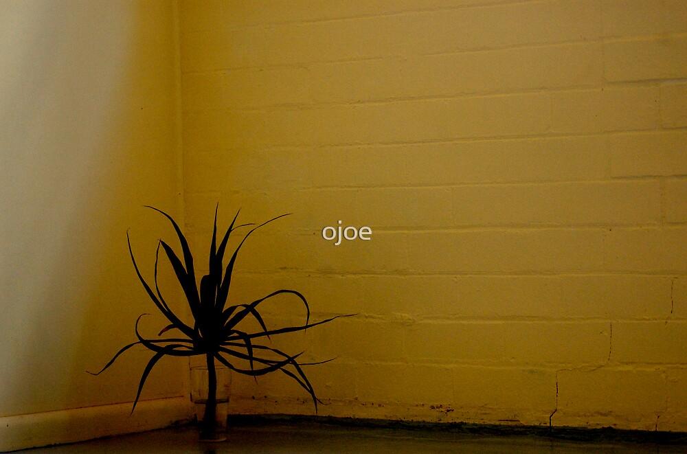 In the corner by ojoe