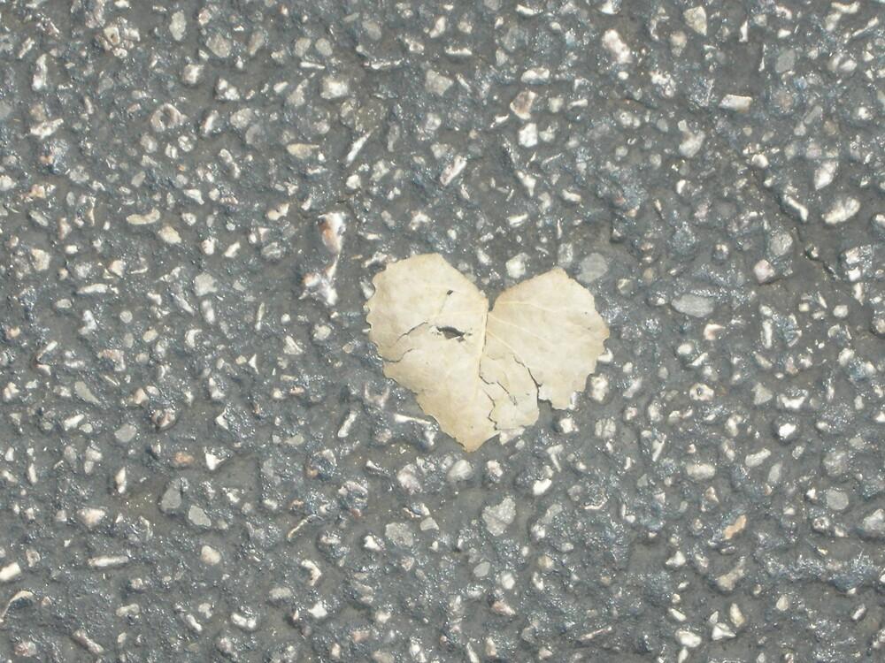 Fragile Heart by BLHIMSL08