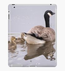 Swimming Lesson iPad Case/Skin