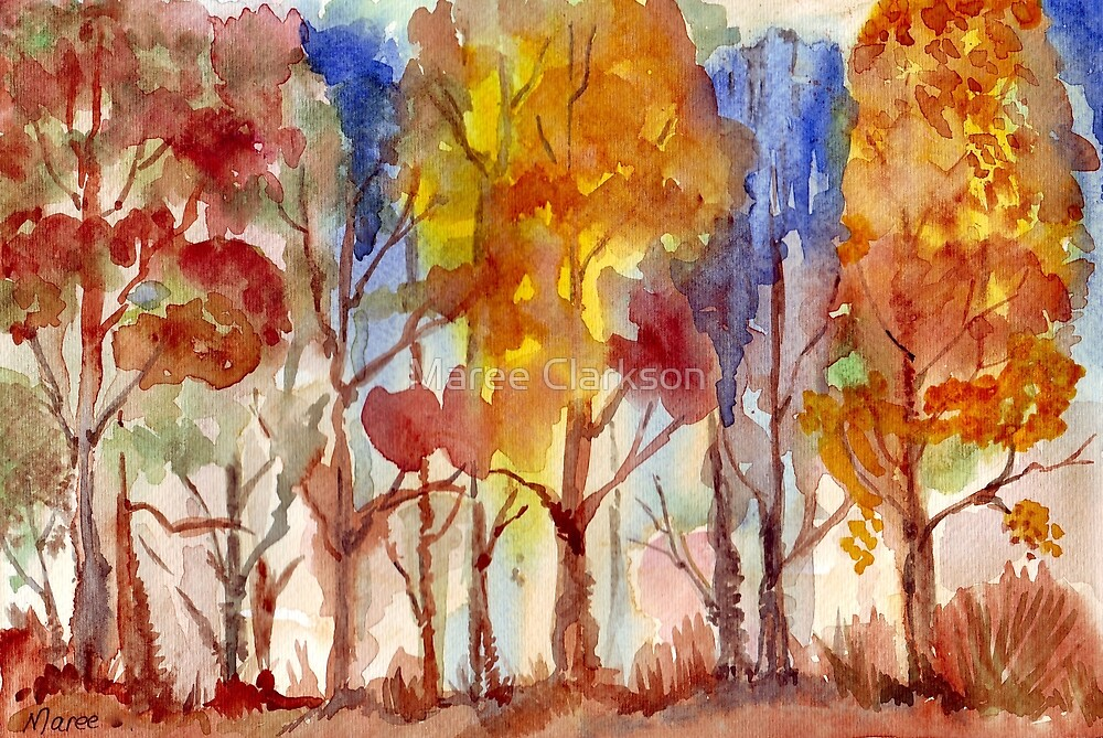 Sunset through the Bluegums by Maree Clarkson