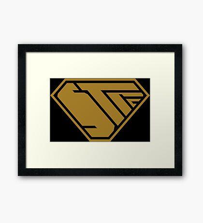 STPC SuperEmpowered (Gold) Framed Art Print