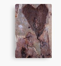 The Heart of a Tree Canvas Print