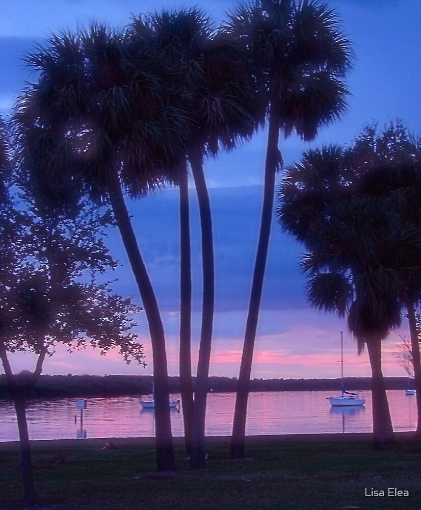 Sunset by Lisa Elea