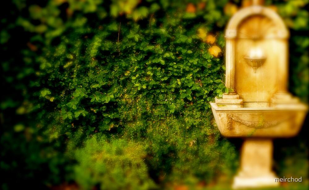 The Secret Garden by meirchod
