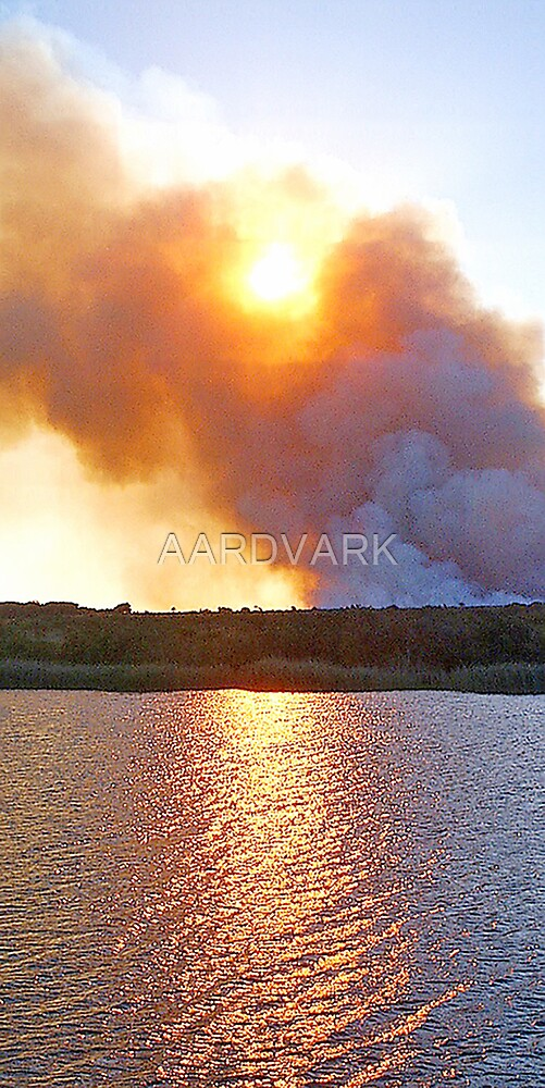 Cane Fire At St. Lucia Estury by AARDVARK