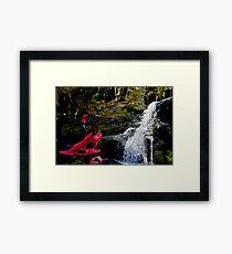 CANOE & ABSEIL  Framed Print