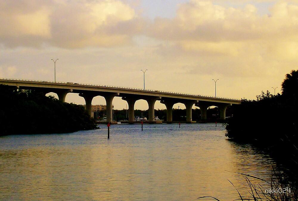 Over the bridge 1 by nikki024