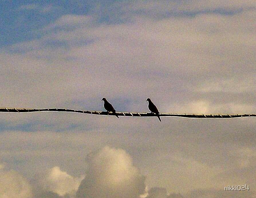 Love Birds by nikki024