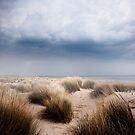 The Dune  by photo-kia