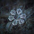 Icy jewel by Alexey Kljatov