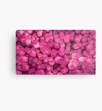 Dozens of Miniature Pink Roses Metal Print