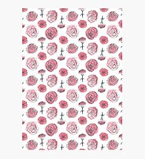 Pink Carnation - January Photographic Print