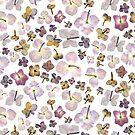 Hydrangea - scattered by Vicky Webb