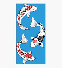Fish carp koi (3) Photographic Print