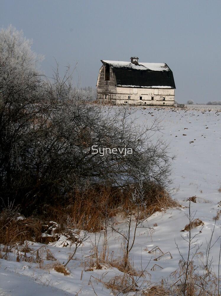 Winter Homestead Barn by Synevja