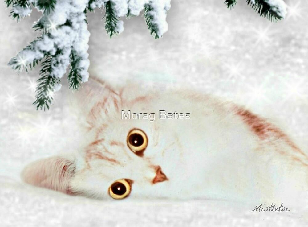 Mistletoe  by Morag Bates