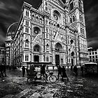 The cathedral of Florence by Livio  Ferrari
