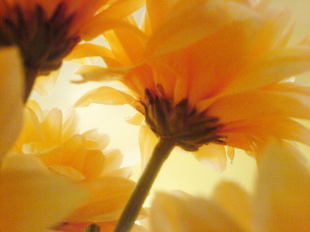 Flower de naturelle by bethhRAWR