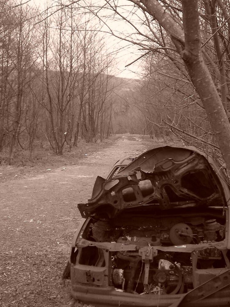 Car by Kym123