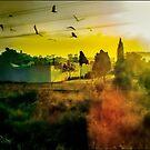 El Campo Valenciano by Ted Byrne