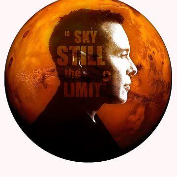 Elon Musk & Is Sky Still The Limit? by Bubolina