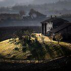 Italian landscape by Livio  Ferrari
