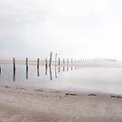 reflection by photo-kia