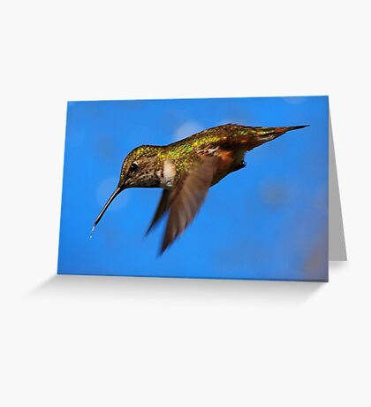 LITTLE BOMBER~ Greeting Card