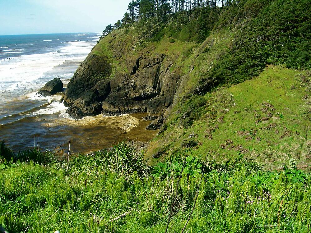 Washington coastline by ctorsey