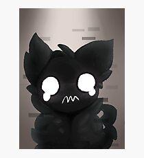 Weird Ghost Cat Photographic Print
