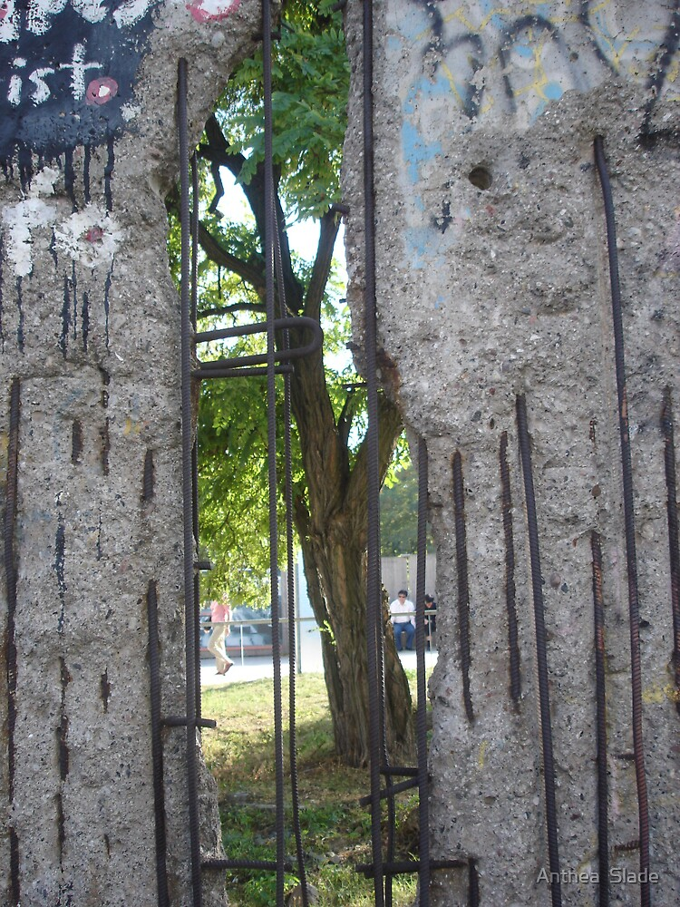 Through the Berlin Wall  by Anthea  Slade