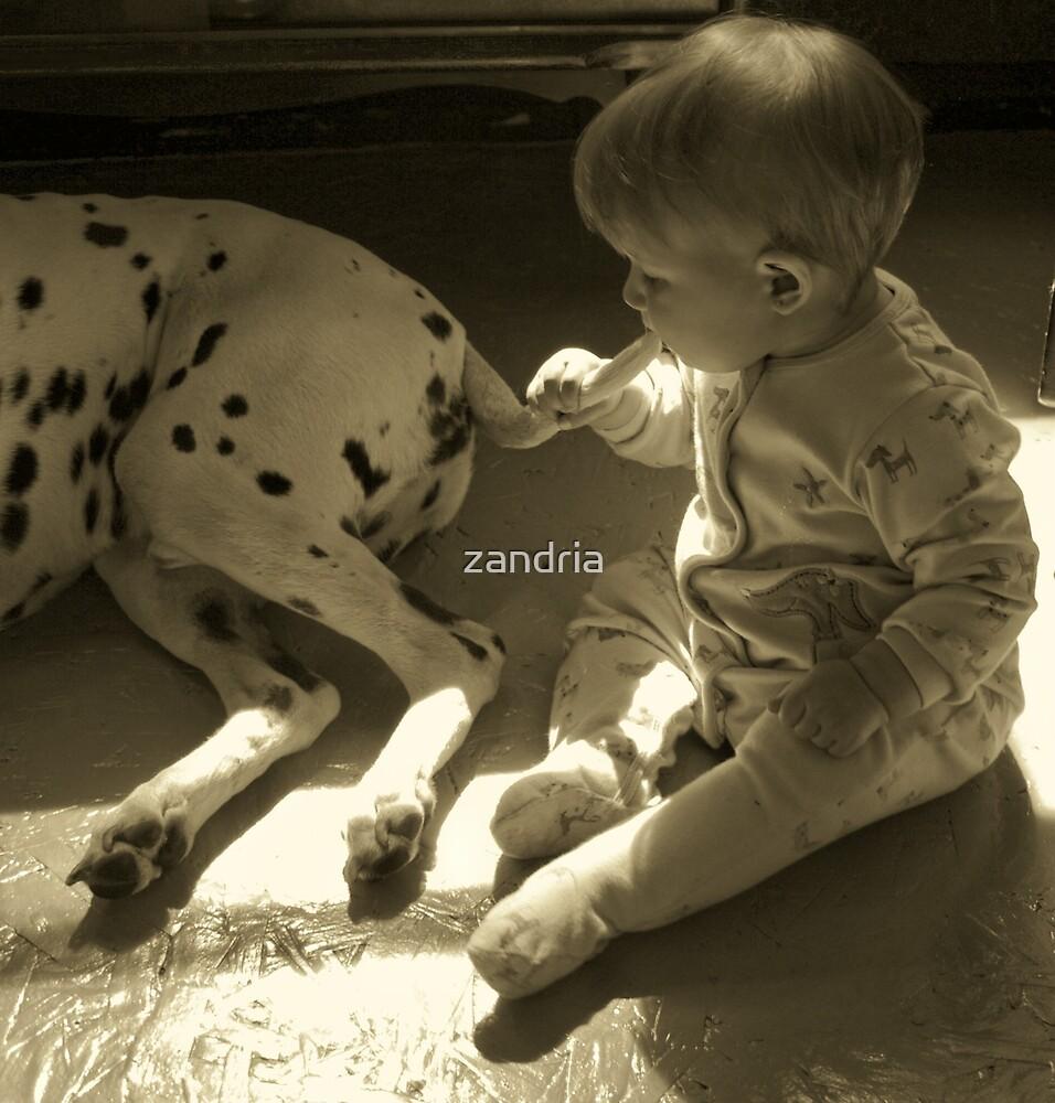 Eating Tail by zandria