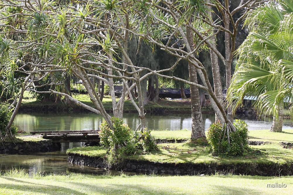 Lau Hala Trees and Pond by maliaio