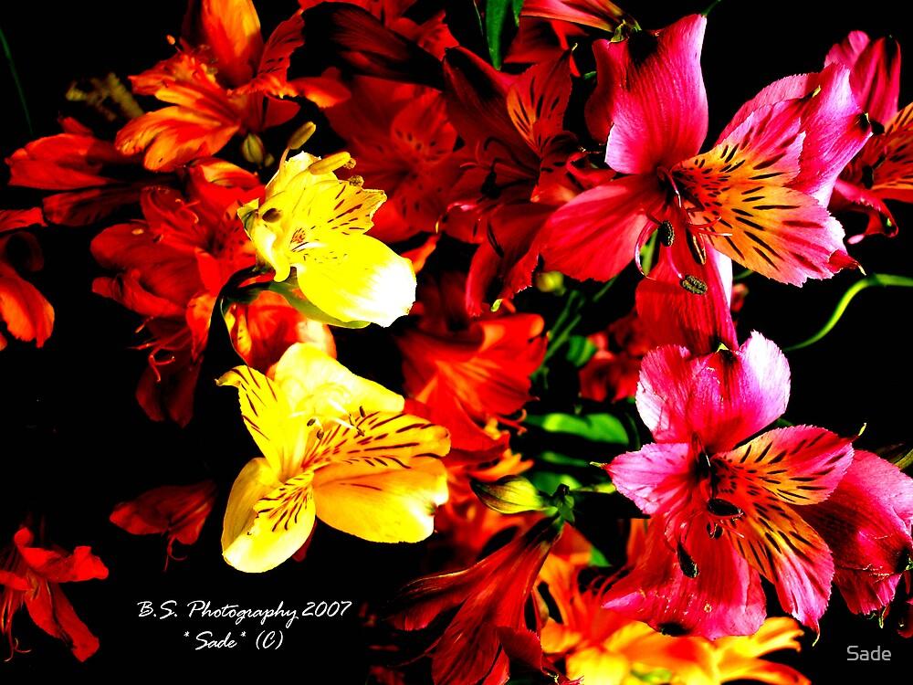 flowers by Sade