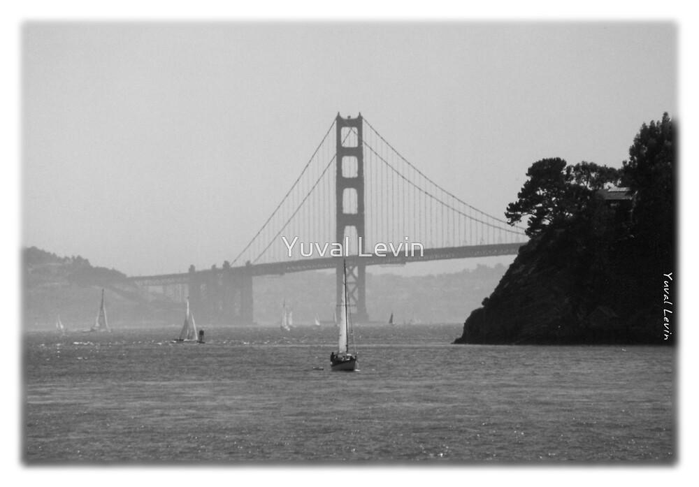 Golden Gate Bridge by Yuval Levin