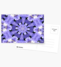 Irises Dance in a Fairy Ring Postcards
