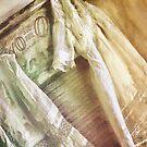 Vintage Laundry by mindydidit