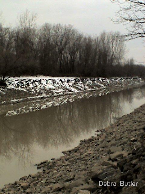 Winter on Erie Canal  by Debra  Butler