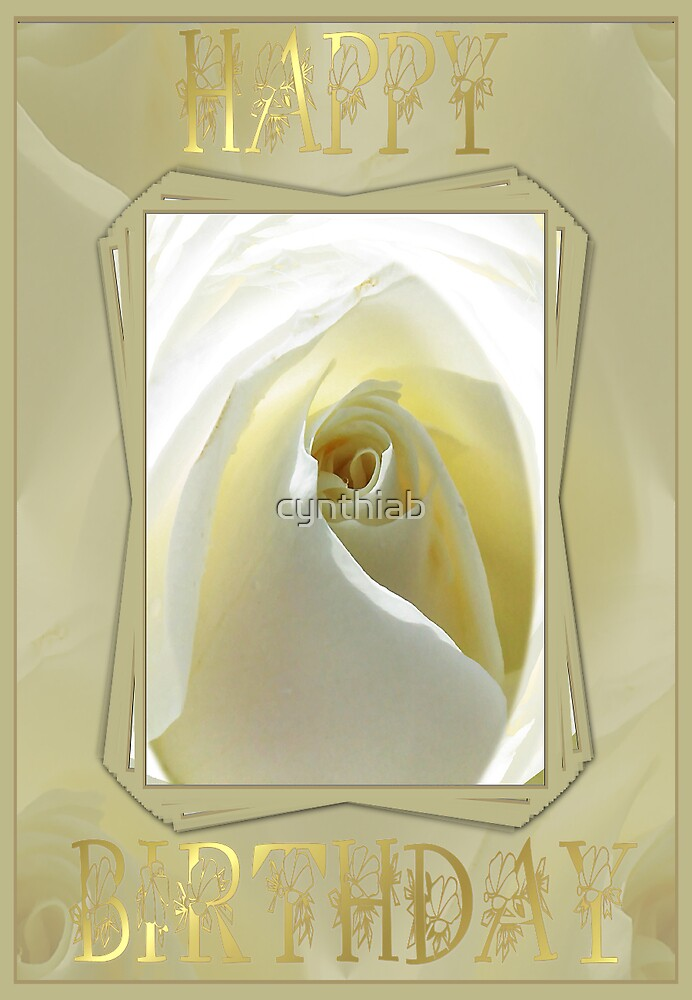 white rose by cynthiab
