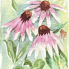 Daisies for healing by Maree Clarkson