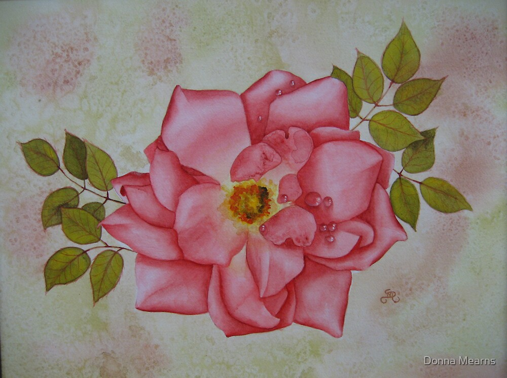 Watercolour rose by Donna Mearns