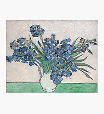 Van Gogh's Irises Photographic Print