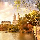 Autumn New York City by Vivienne Gucwa