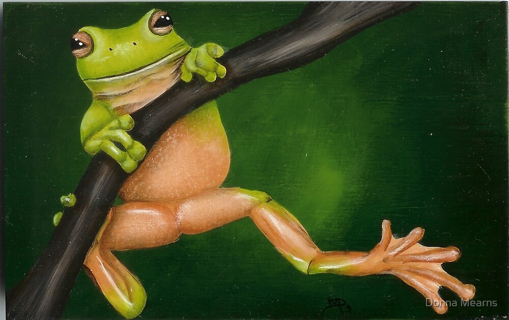 Tree Frog by Donna Mearns