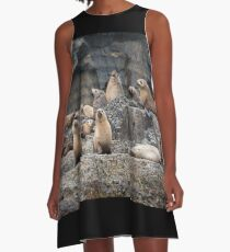Seal Family A-Line Dress