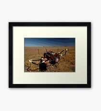 Olympic Highway Aeroplane Letterbox,Australia Framed Print