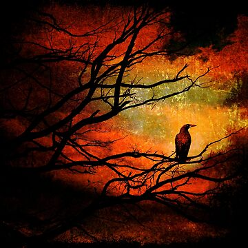 Basho's Crow by ronmoss