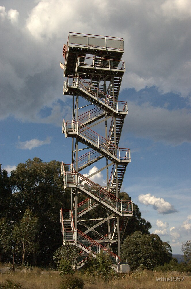 Staircase Observation Tower - Mt Donna Buang - Victoria  by lettie1957