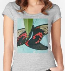 Common Mormon butterflies locking in a mating embrace Women's Fitted Scoop T-Shirt